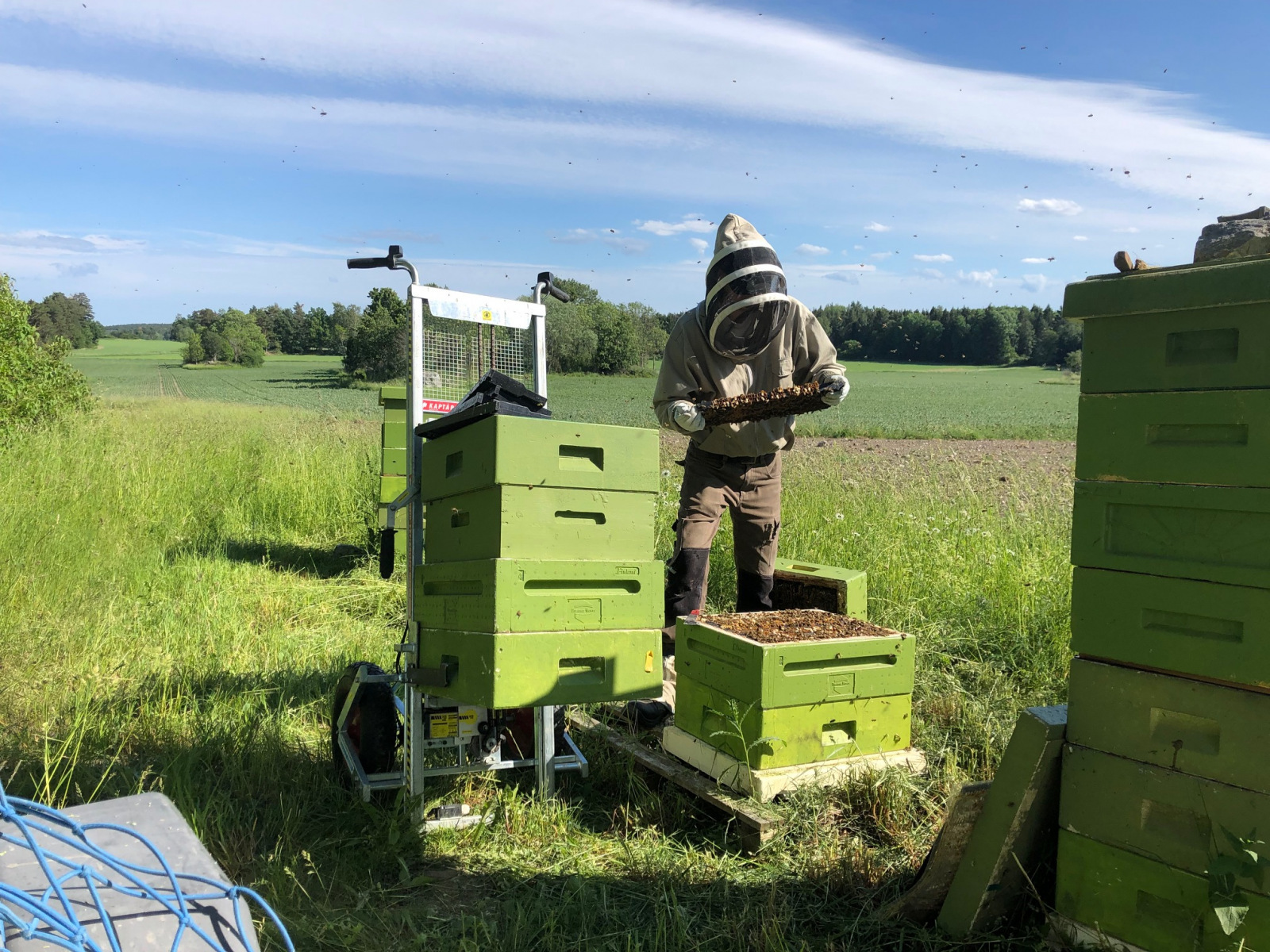 Lifting aid, The new electric lift really simplifies the work in the apiary